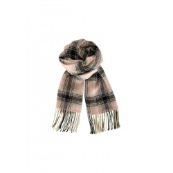 Black Colour Albany Pastel Check Scarf Rose